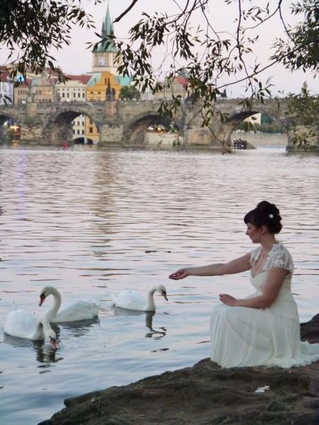 bride vit-vib